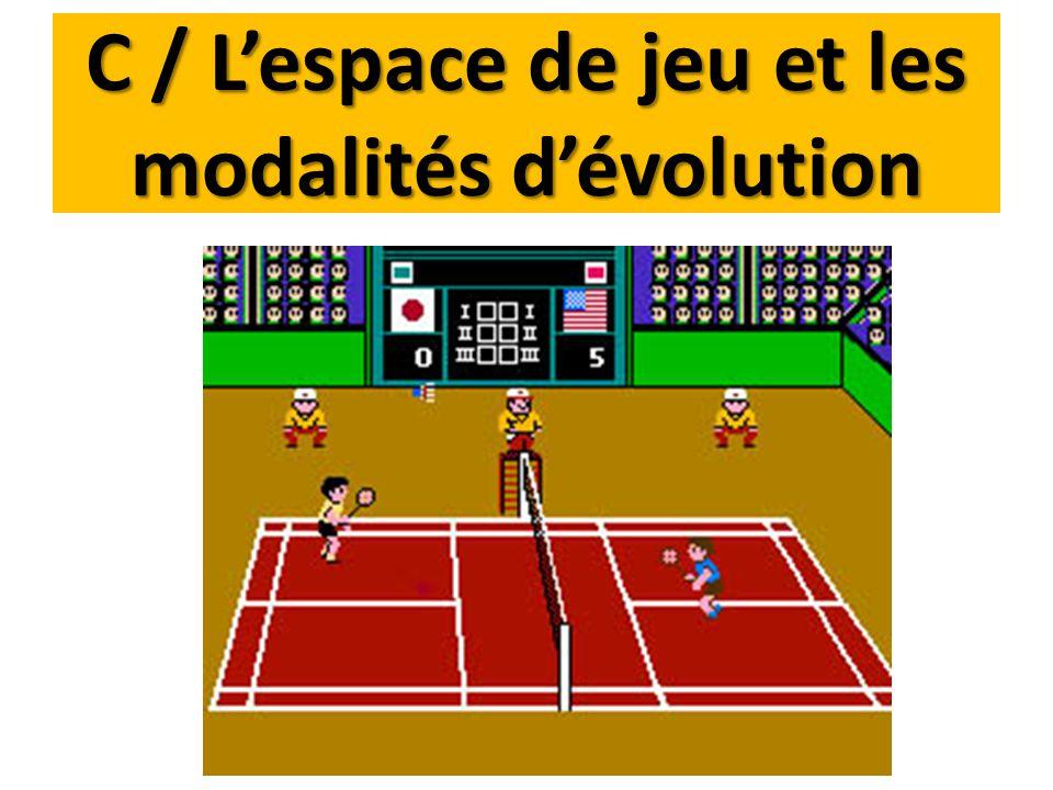 C / L'espace de jeu et les modalités d'évolution