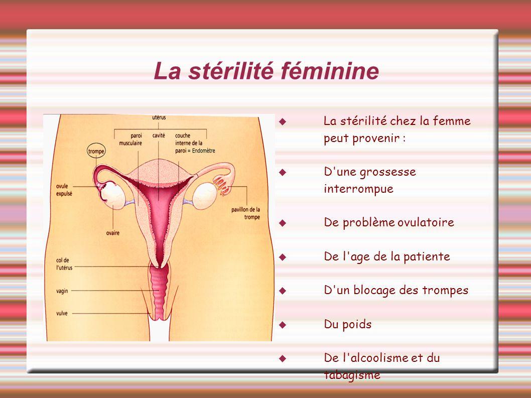 La stérilité féminine La stérilité chez la femme peut provenir :