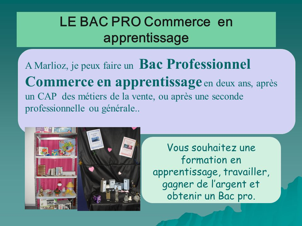 LE BAC PRO Commerce en apprentissage