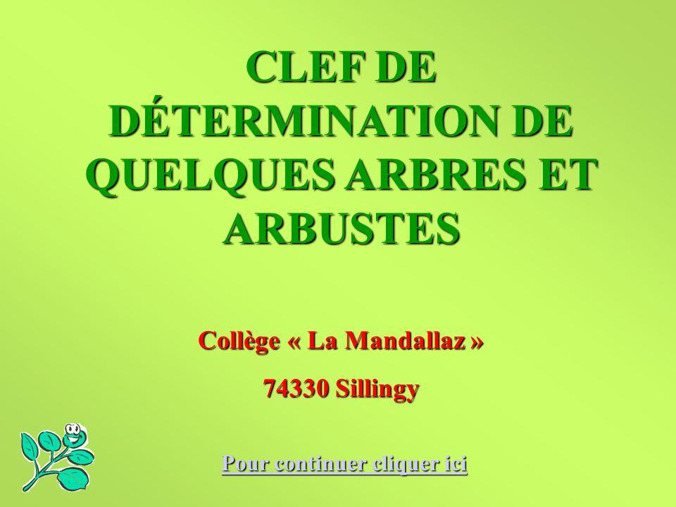 CLEF DE DÉTERMINATION DE QUELQUES ARBRES ET ARBUSTES