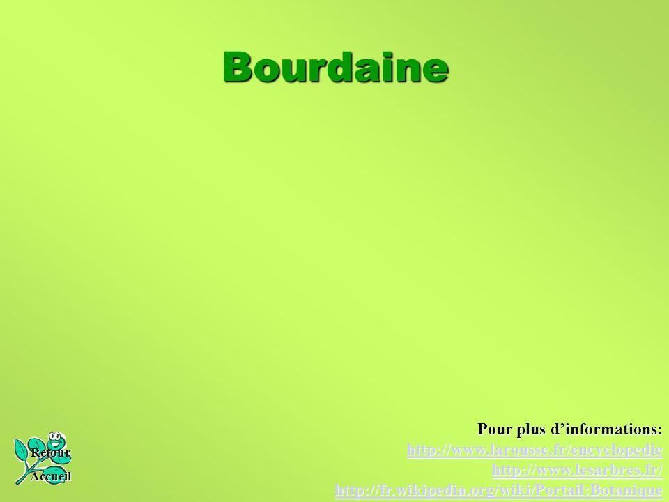 Bourdaine Pour plus d'informations: