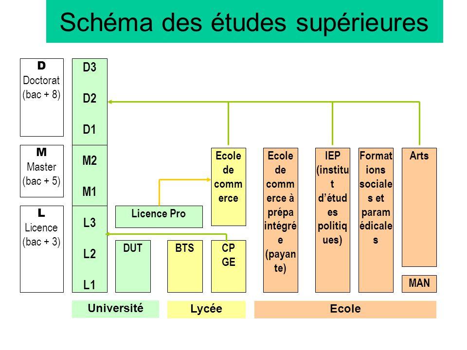 Schéma des études supérieures