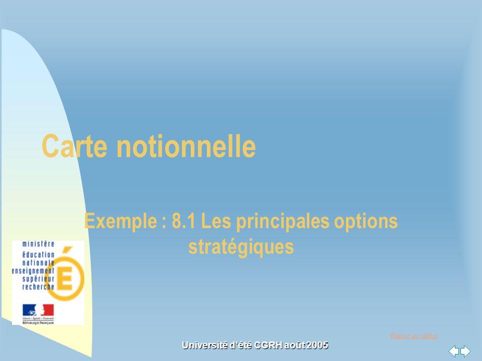 Exemple : 8.1 Les principales options stratégiques
