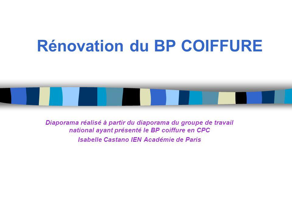 Rénovation du BP COIFFURE