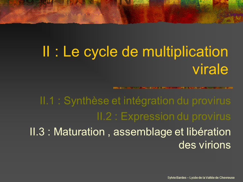 II : Le cycle de multiplication virale