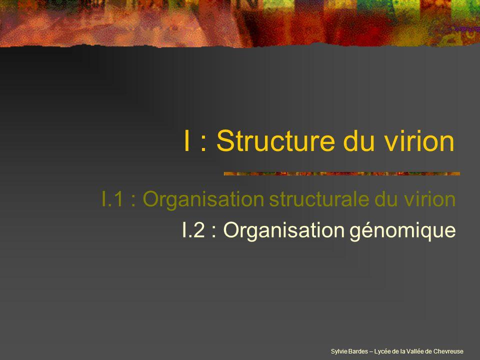 I.1 : Organisation structurale du virion I.2 : Organisation génomique