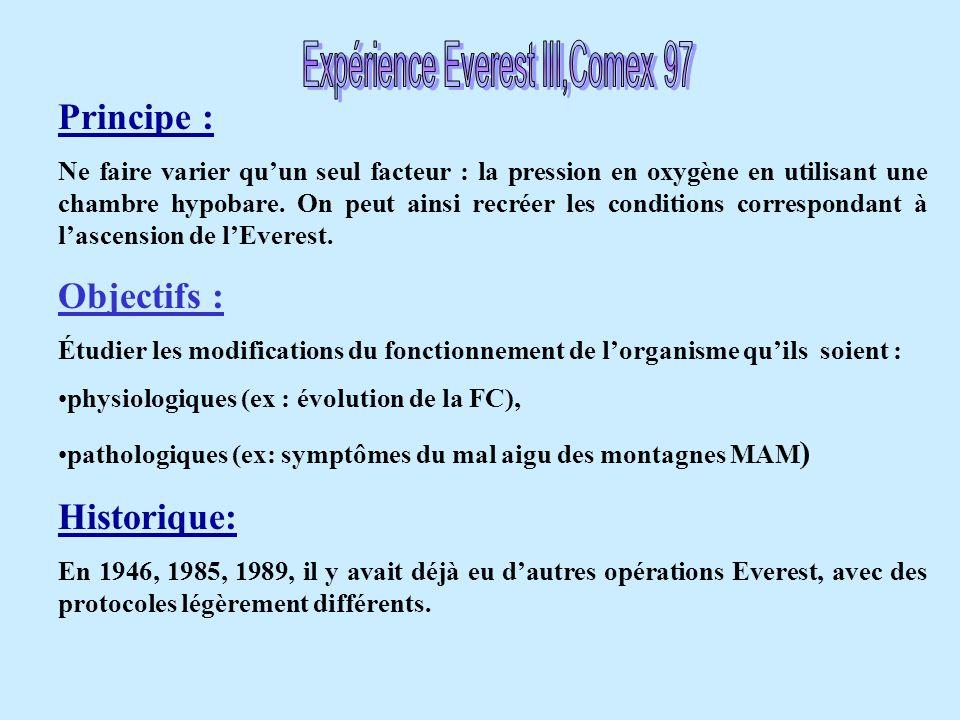 Expérience Everest III,Comex 97