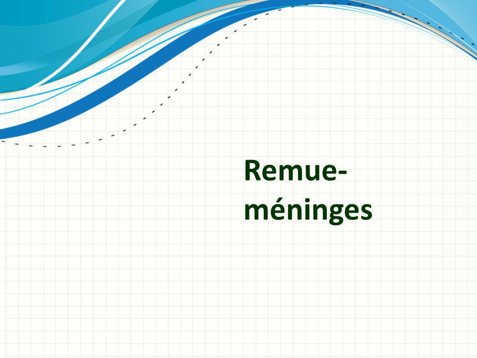 Remue-méninges Utiliser un en-tête de section pour chacun des sujets afin de définir une transition claire pour l'audience.