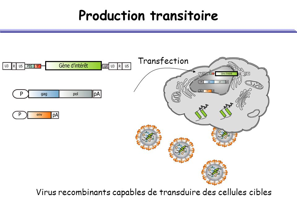 Production transitoire