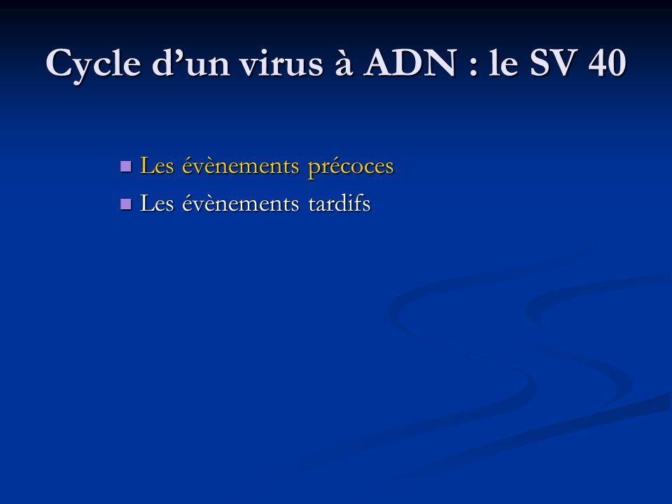 Cycle d'un virus à ADN : le SV 40