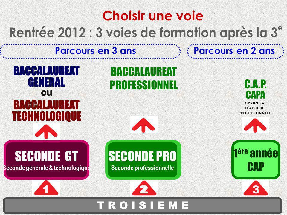 Choisir une voie Rentrée 2012 : 3 voies de formation après la 3