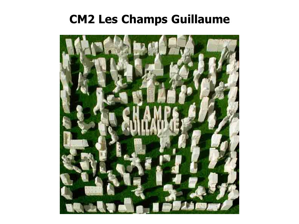 CM2 Les Champs Guillaume
