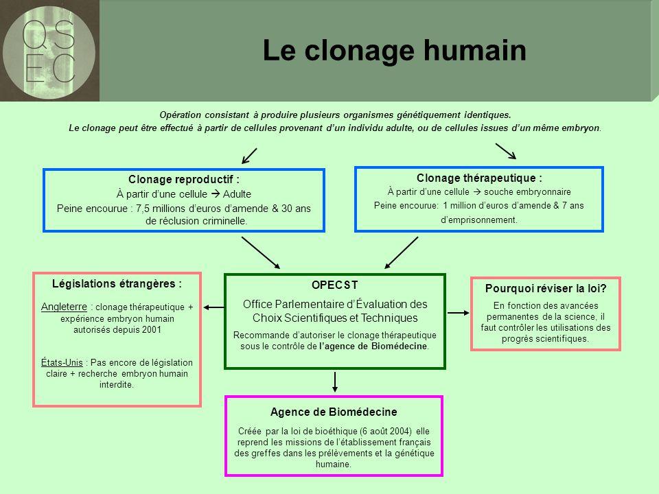 Clonage thérapeutique : Législations étrangères :