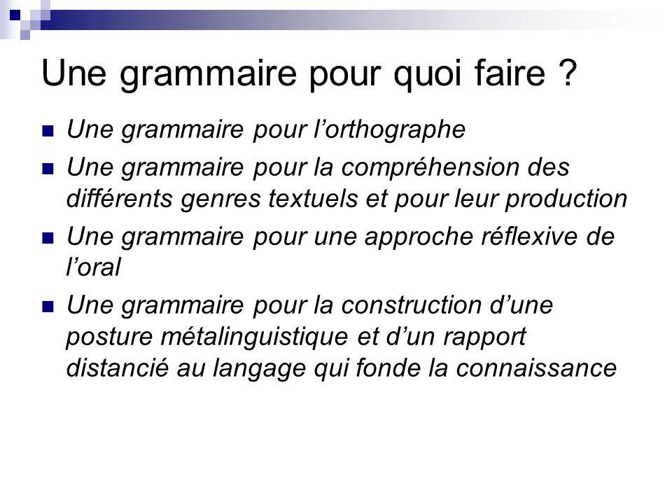 Une grammaire pour quoi faire