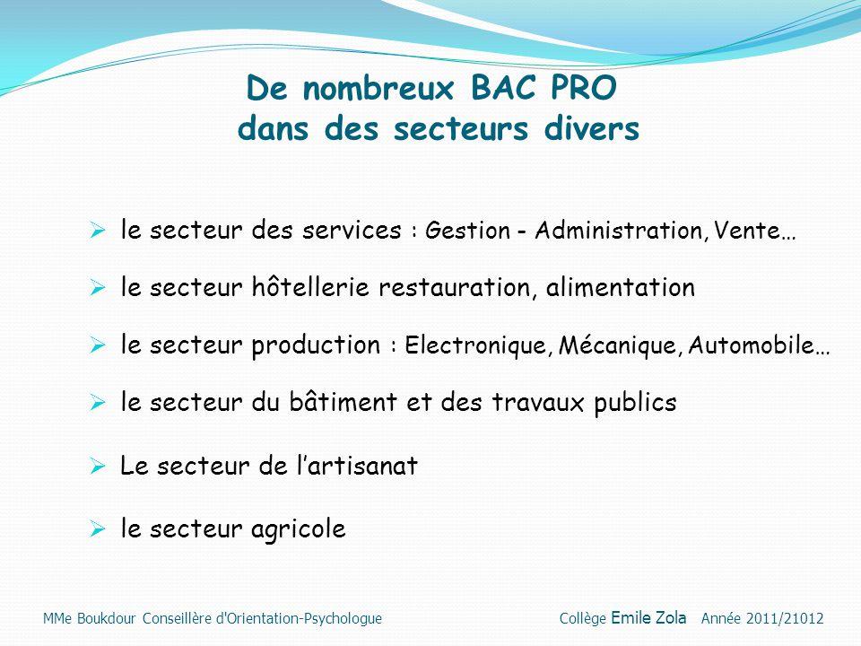 De nombreux BAC PRO dans des secteurs divers