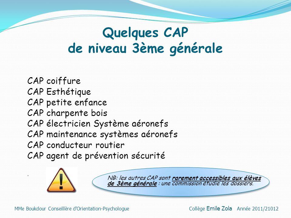 Quelques CAP de niveau 3ème générale