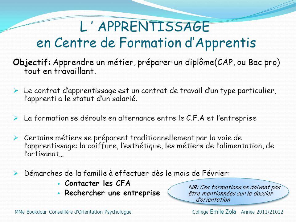 L ' APPRENTISSAGE en Centre de Formation d'Apprentis