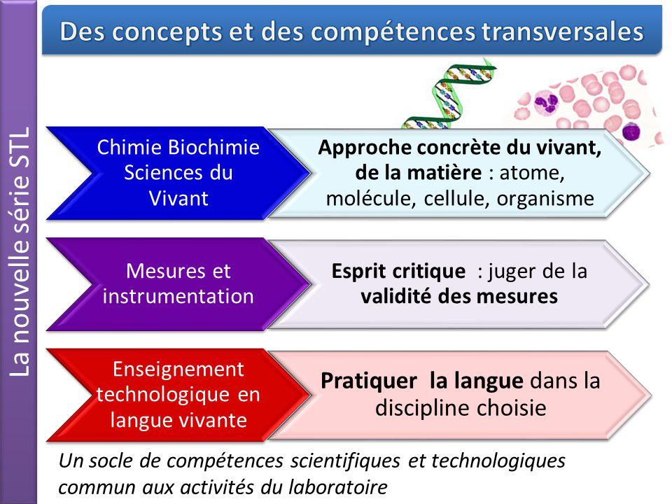Des concepts et des compétences transversales