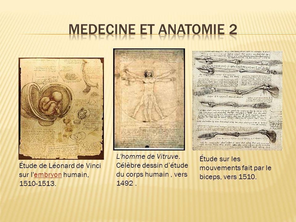 MEDECINE ET ANATOMIE 2 L homme de Vitruve. Célèbre dessin d'étude du corps humain , vers 1492 .
