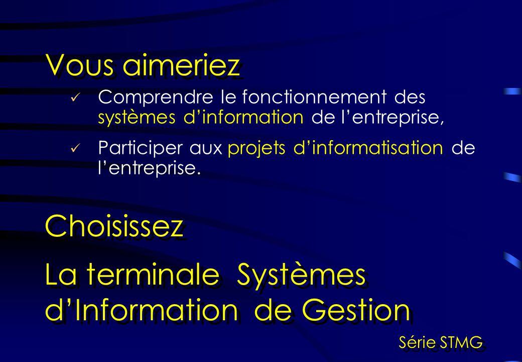 La terminale Systèmes d'Information de Gestion