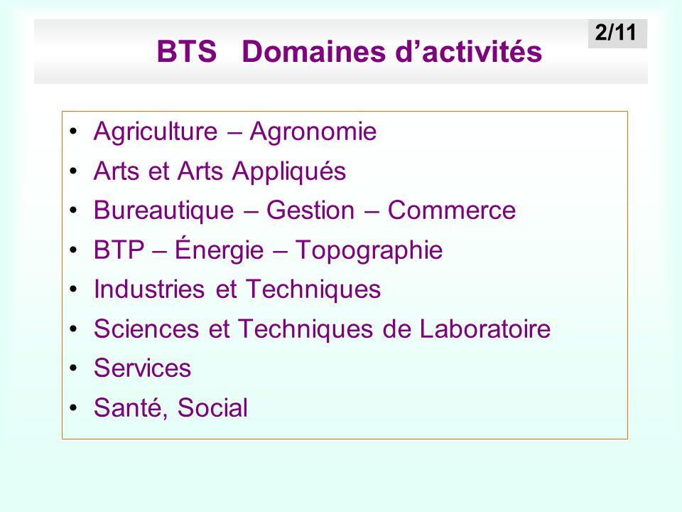 BTS Domaines d'activités