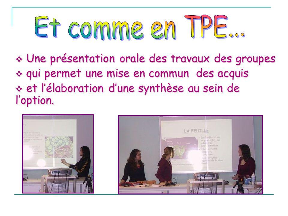 Et comme en TPE... Une présentation orale des travaux des groupes