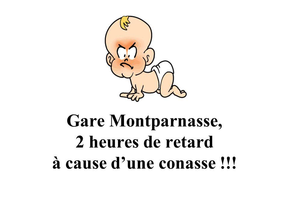 Gare Montparnasse, 2 heures de retard à cause d'une conasse !!!