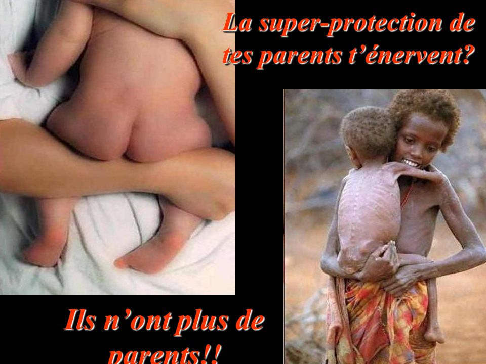 Ils n'ont plus de parents!!