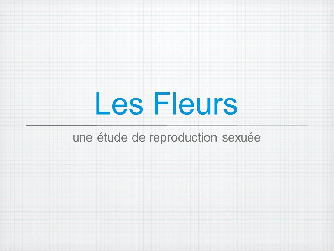 une étude de reproduction sexuée