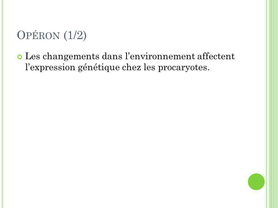 Opéron (1/2) Les changements dans l'environnement affectent l'expression génétique chez les procaryotes.
