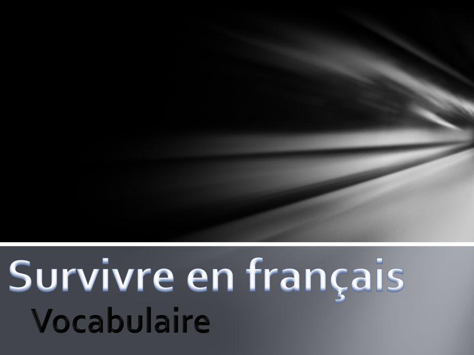 Survivre en français Vocabulaire