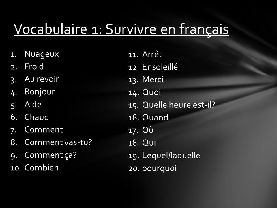 Vocabulaire 1: Survivre en français
