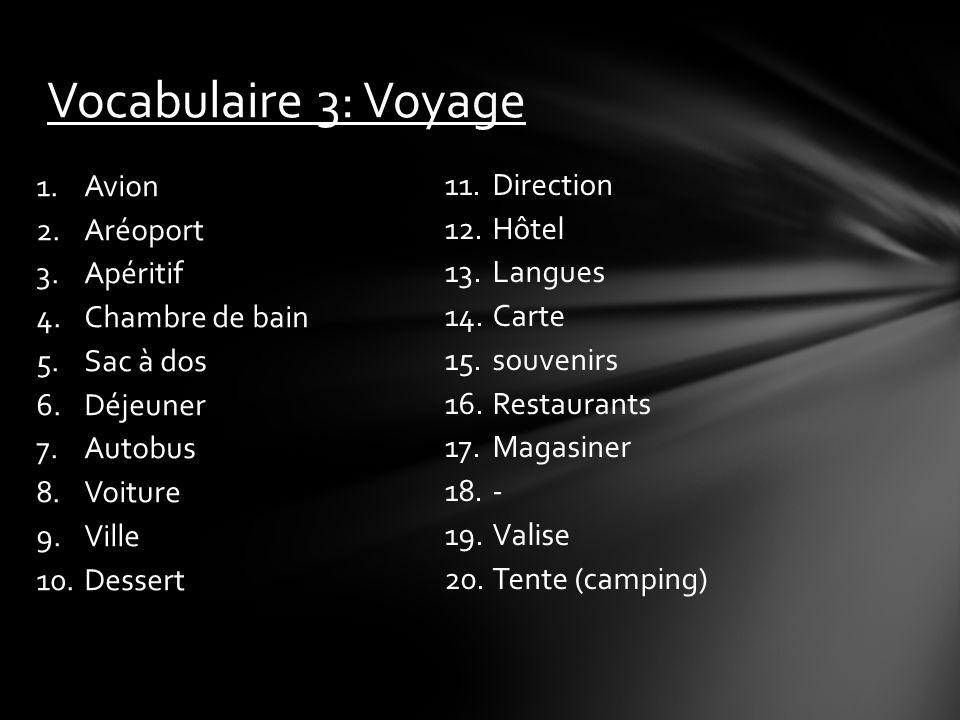 Vocabulaire 3: Voyage Avion Aréoport Direction Apéritif Hôtel