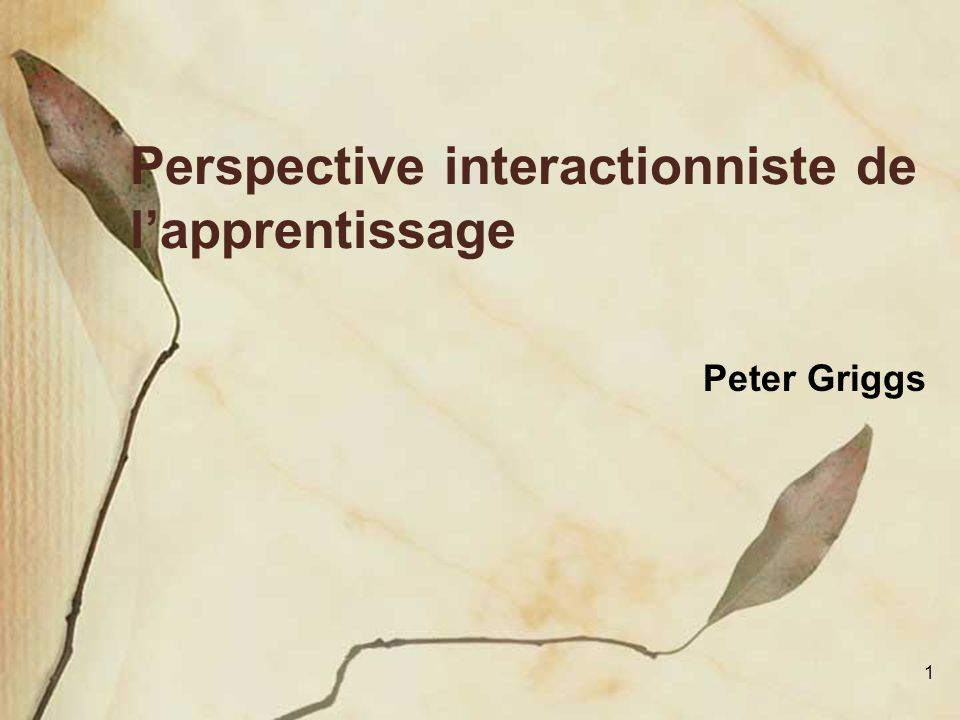 Perspective interactionniste de l'apprentissage