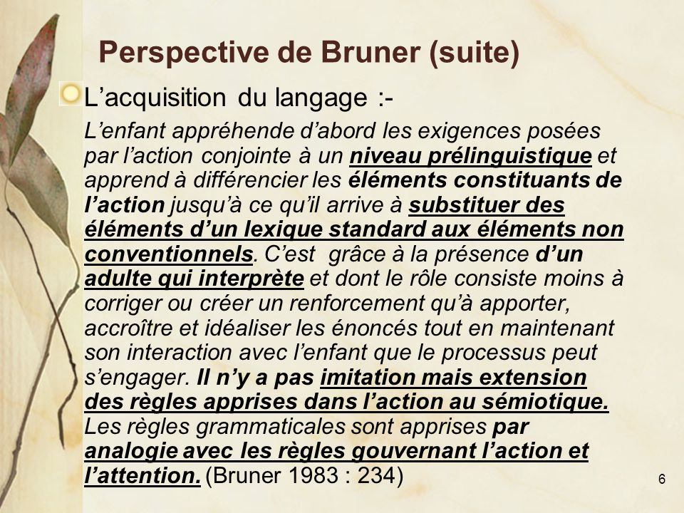 Perspective de Bruner (suite)