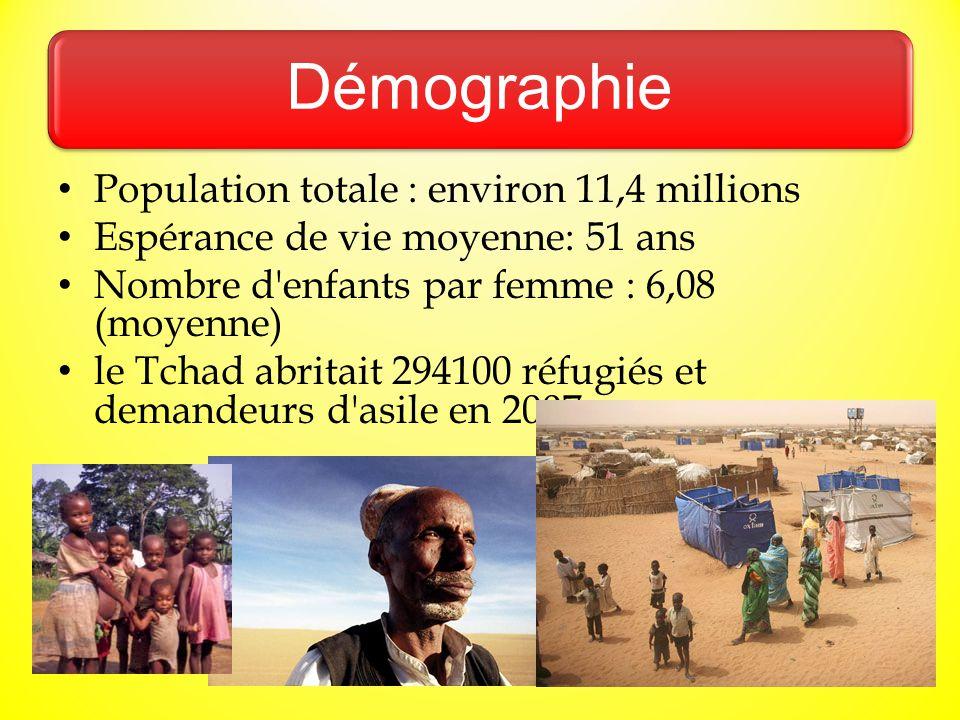 Démographie Population totale : environ 11,4 millions