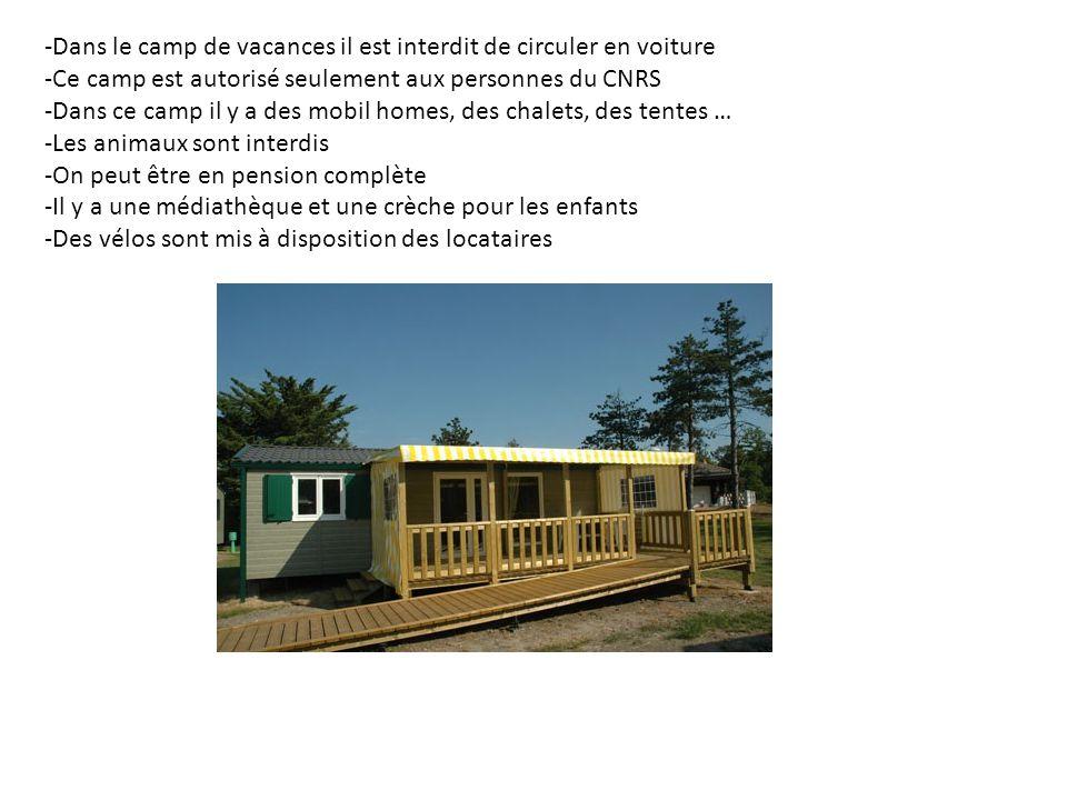 -Dans le camp de vacances il est interdit de circuler en voiture
