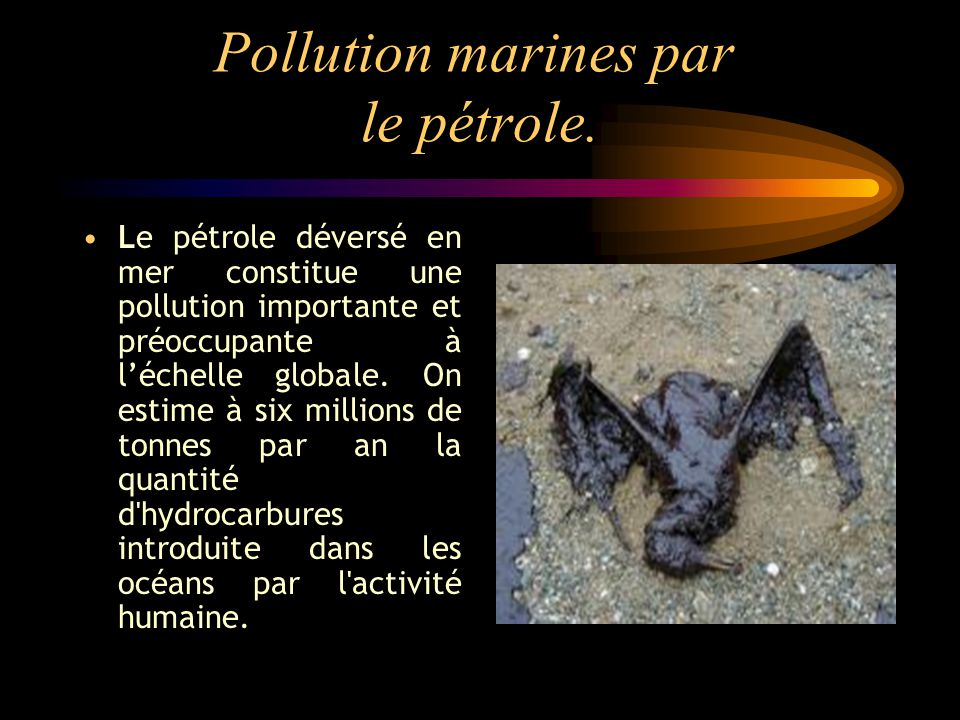 Pollution marines par le pétrole.