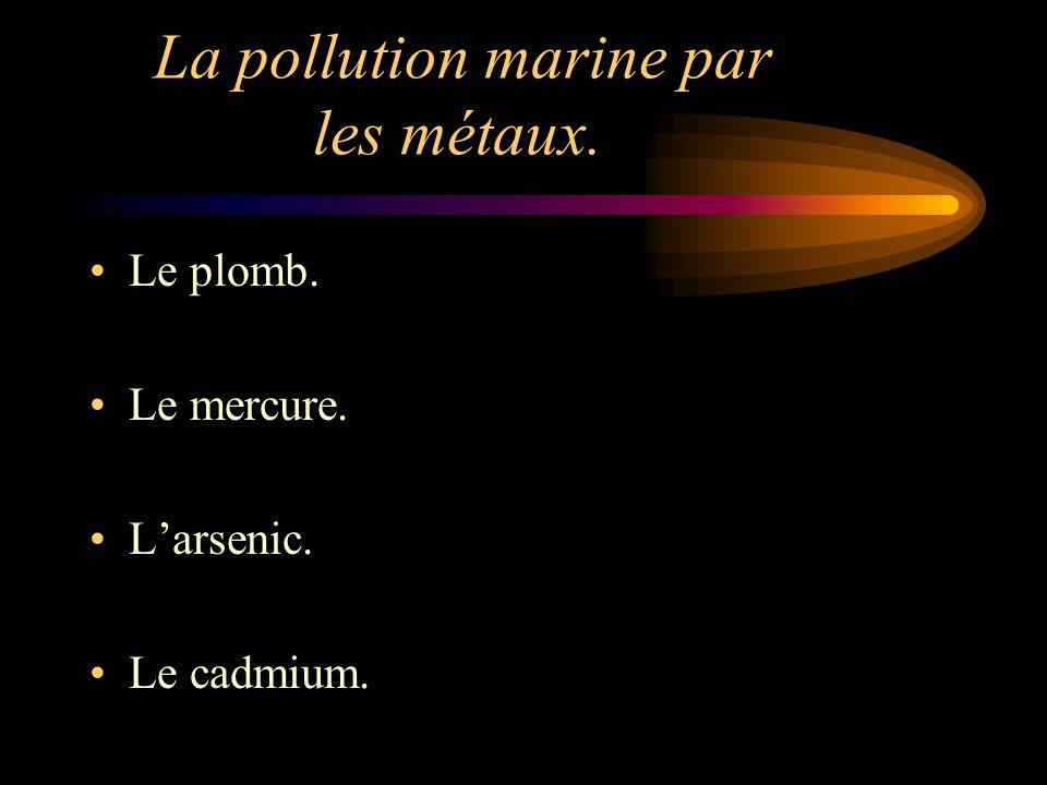 La pollution marine par les métaux.