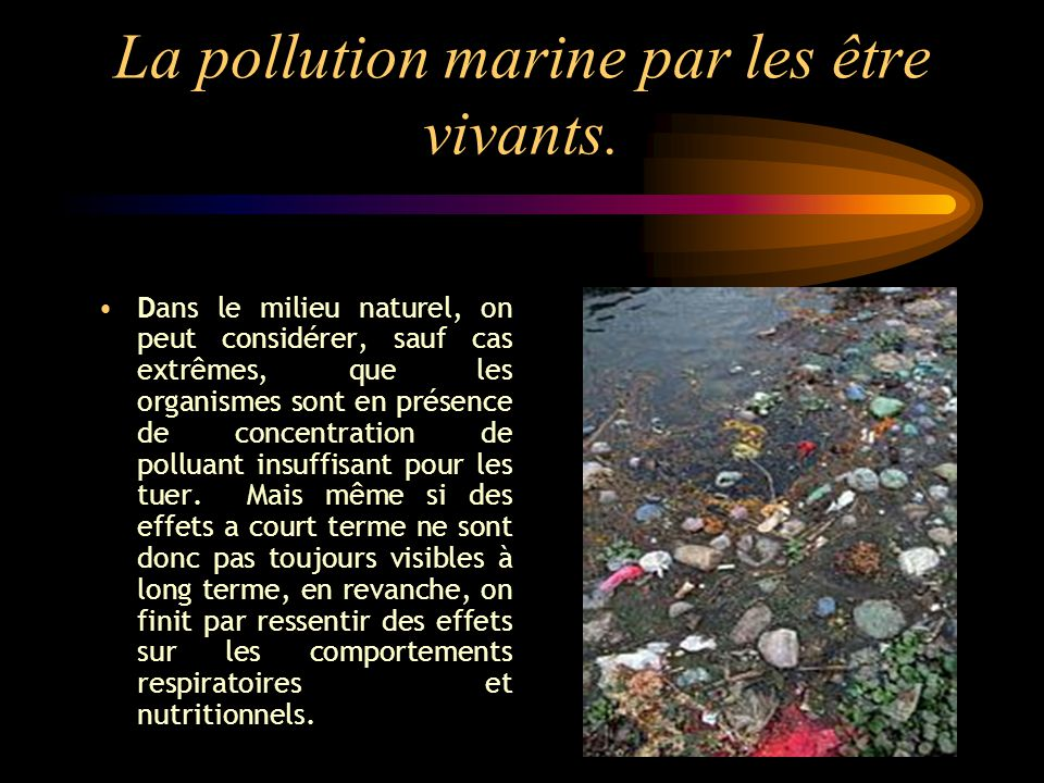 La pollution marine par les être vivants.