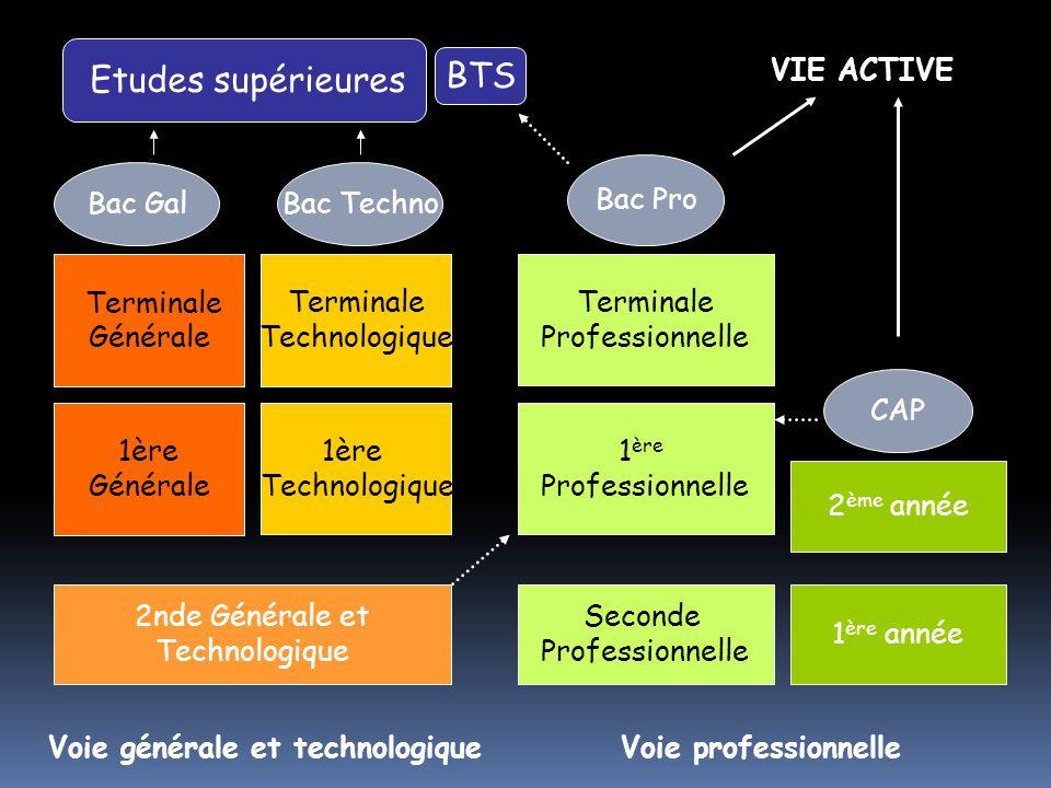 BTS VIE ACTIVE Bac Pro Bac Gal Bac Techno Terminale Générale Terminale