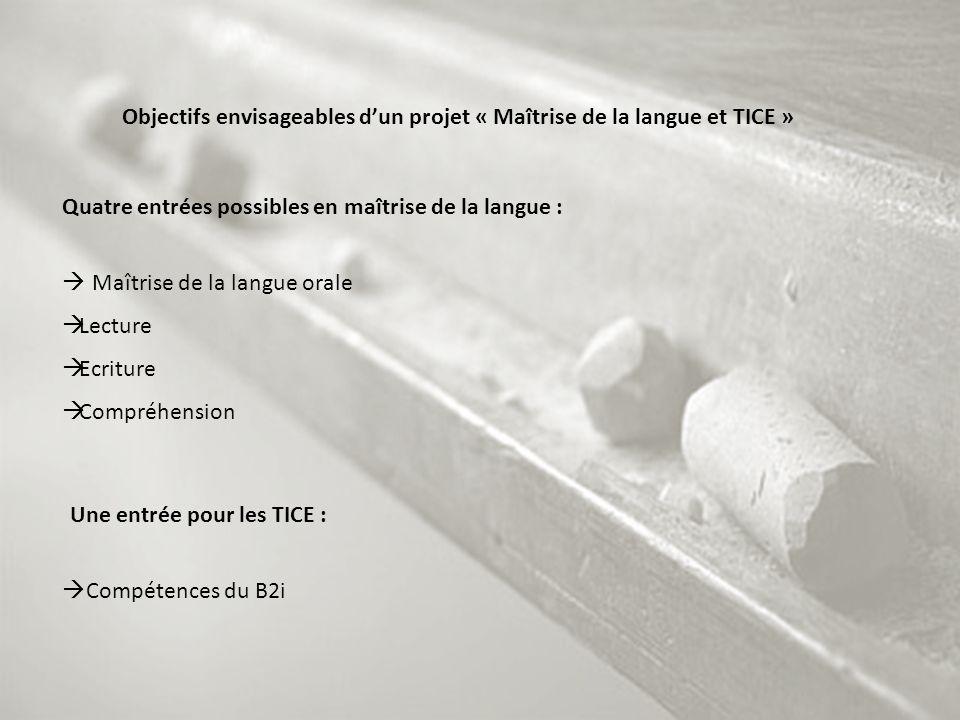 Objectifs envisageables d'un projet « Maîtrise de la langue et TICE »