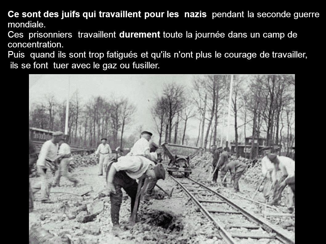 Ce sont des juifs qui travaillent pour les nazis pendant la seconde guerre mondiale.