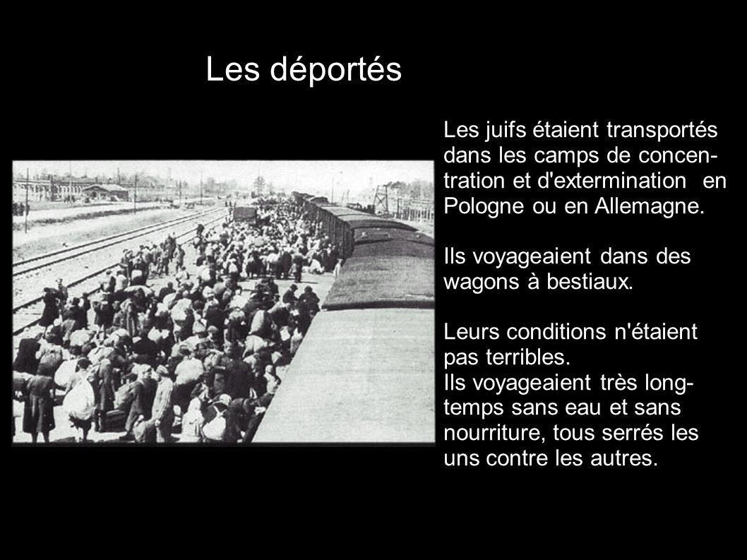 Les déportés Les juifs étaient transportés dans les camps de concen- tration et d extermination en Pologne ou en Allemagne.