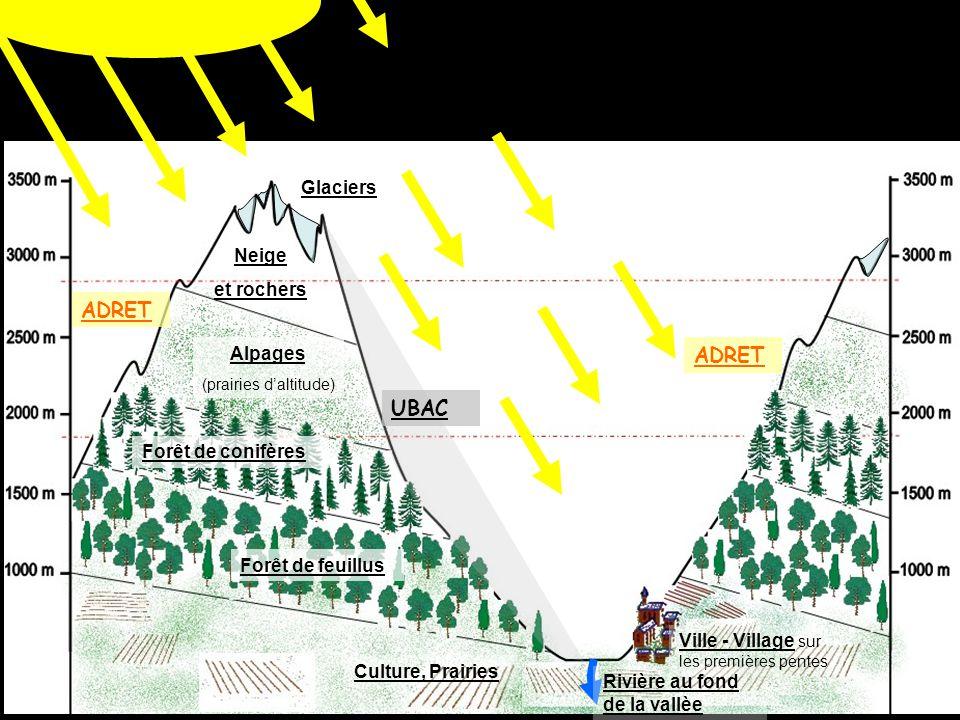 ADRET ADRET UBAC Glaciers Neige et rochers Alpages Forêt de conifères