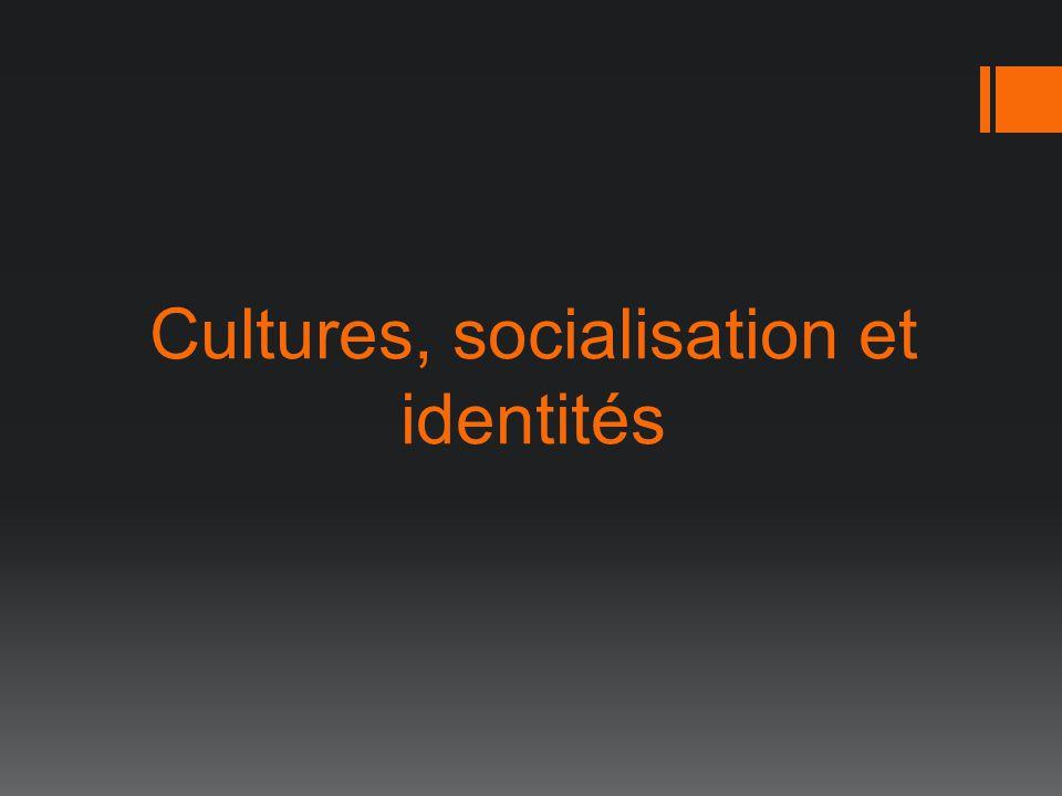 Cultures, socialisation et identités