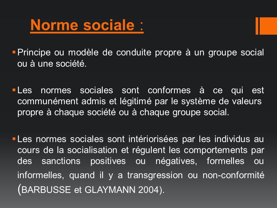 Norme sociale : Principe ou modèle de conduite propre à un groupe social ou à une société.