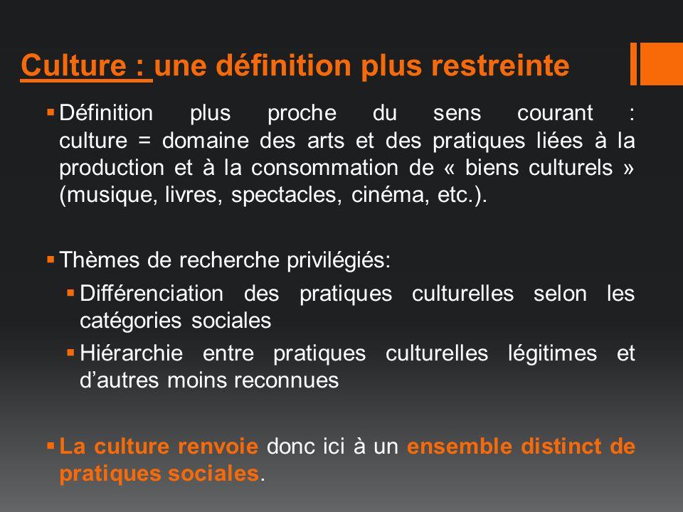 Culture : une définition plus restreinte