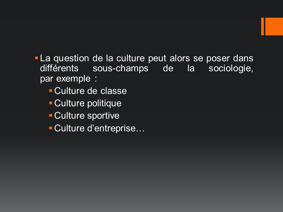 La question de la culture peut alors se poser dans différents sous-champs de la sociologie, par exemple :