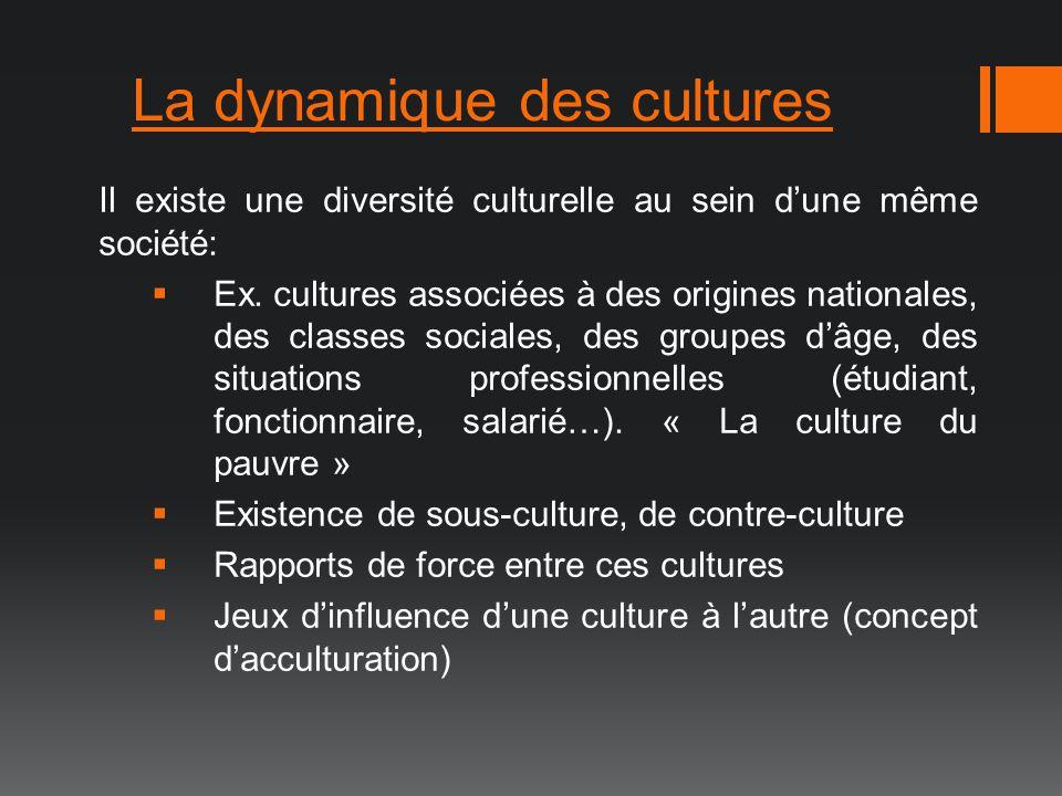 La dynamique des cultures